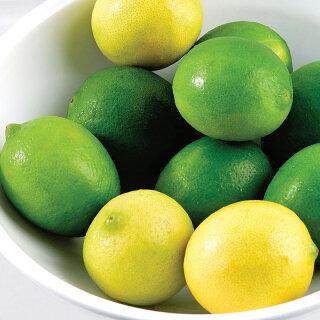 レモンとライムにしか含まれない成分とは?