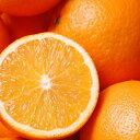 太陽をたっぷり浴びた、ブラジルのオレンジ。オレンジスイート(Orange Sweet)50ml天然100%のエッセン...
