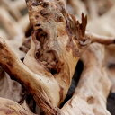 ディフューザーで人気の、アジアンテイストな香り。サンダルウッドアミリス(Sandalwood)10ml天然100%...