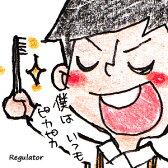 【99円/ツイデガイ】(日本製)磨きやすい歯ブラシ ※各種あります。