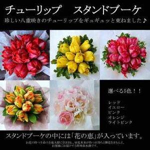 八重咲き チューリップ スタンド フラワー プレゼント バレンタイン