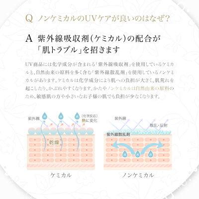 <化粧下地・日やけ止め乳液>ライゼウォーターバリアトーンアップUV30g[使用目安:約2ヶ月]REISE卵殻膜化粧品化粧下地日やけ止め乳液美白ハリ弾力潤い透明感キメ送料無料