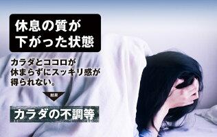 睡眠休息サプリ[ぐっすりん]睡眠薬睡眠導入剤ではない天然植物サプリメント20粒/20日分[送料無料軽減税率キャッシュレス還元]