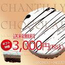 【送料無料※税込3,000円】【ギフト特別価格&送料無料】生クリーム で食べる チョコレート -Shantilly Chocolat -■シャンティ・ ショ…