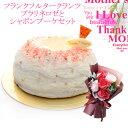 マーブルショコラムースケーキ(4号)【代引不可】