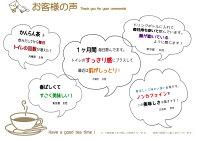 ティーパック/簡単/ノンカフェイン紅茶/橄欖/新発売/1000円/ぽっきり/ポッキリ