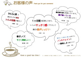 ティーパック/簡単/ノンカフェイン紅茶/橄欖/新発売/