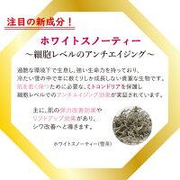 ビタミンC/スーパーヒアルロン酸/ローヤルゼリー/乾燥ケア/なめらか/うるおい/スキンケア/サポート/保湿/乾燥/シミ/そばかす