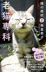 ペット, 猫  2