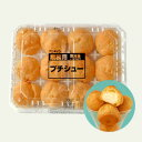 【冷凍】アンディコ プチシュー 12個入り 【業務用食品】【...