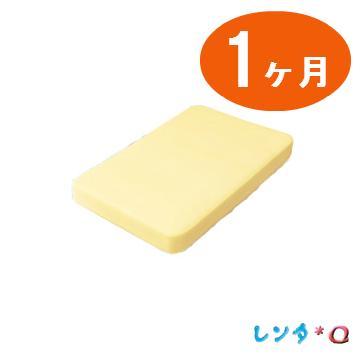 【レンタル 1ケ月】サークルベッド ベーシック用 スプリングマット(大)