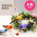 スプリングバード 全6色入り 【鳥 オブジェ 置物 オーナメント イン...