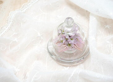 【送料無料】ボトルフラワー 桜 さくら(ドーム型) Sサイズ LA_BINKA アレンジメント フラワーギフト