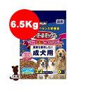 ラン・ミールミックス 大粒の歯みがき粒入り 健康を維持したい成犬用 6.5kg 日清ペットフード ▼a ペット フード 犬 ドッグ ドライ