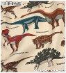 【ツイル生地】●○恐竜図鑑●○きょうりゅうずかん【生地通園通学スモックエプロン子供こども男の子入園入学ツイル袋学用品かっこいいザウルスステゴダイナソー恐竜トリケラトプス】