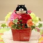 【母の日】【生花アレンジ】のる〜ん犬ぬいぐるみ・黒柴付ミルクBOXお花畑フラワーアレンジメントFL-MD-016