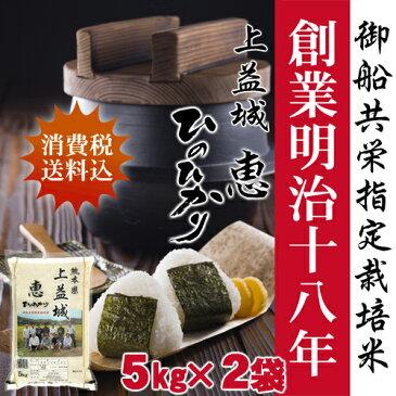 【29年産】上益城 恵ひのひかり10kg(5kg2袋)【送料無料】