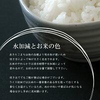 水加減とお米の色