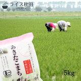 令和2年 有機栽培米 5kg 秋田県大潟村産 あきたこまち 白米 無洗米 胚芽米 玄米
