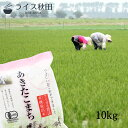 【新米】令和3年 有機栽培米 10kg 秋田県大潟村産 あきたこまち 白米 無洗米 胚芽米 玄米
