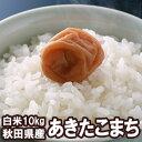 No_akita_nonprice10