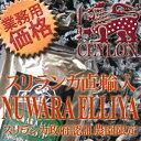 Nuwa_new