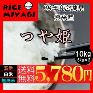 新米29年産つや姫 10kg(5kg×2) 宮城県登米産〔...