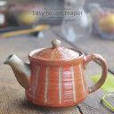 和食器 美味しい お茶 彫十草 赤 レッド ティーポット 小 茶漉し付 茶器 食器 緑茶 紅茶 ハーブティー おうち うつわ 陶器 日本製 美濃焼
