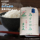 【令和元年度産】特別栽培米 THE GRAND みずかがみ 玄米20Kg 1