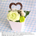 【枯れない花】で自分だけのスペシャルギフトメッセージ入りプレート付き プリザーブドフラワ...