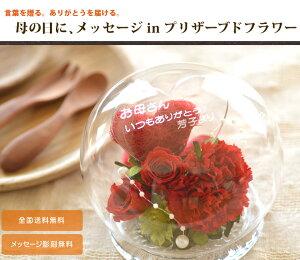 【SALE】【送料無料】 メッセージinプリザーブドフラワードーム型カーネーションアレンジ 父の日 母の日