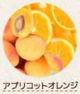 アプリコットオレンジ