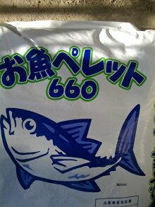[送料無料]【お魚ペレット660】有機100%20Kg