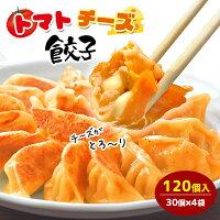 【ご家庭用】トマトチーズ餃子100個入り送料無料タレなし餃子焼餃子