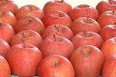 毎日りんごを食べる人にオススメ!毎月違った訳ありりんごをお届けいたします!1200円以上お得...