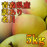 【訳あり】青森県産名月5kg(約14〜23玉入)※順次出荷中