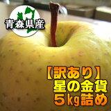 【訳あり】星の金貨5kg詰(約14〜20玉入)