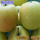 【数量限定】青森県産幻の黄金ふじ5kg(18〜25玉入り)