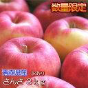【予約商品】青森県産「訳あり」さんさ3kg(10〜14玉入)