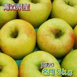 【訳あり】青森県産名月5kg(約13〜23玉入)※27日まで再販決定