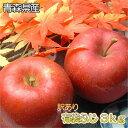 【青森県産】【訳あり】 有袋ふじ3kg(8〜12玉入)ダンボ