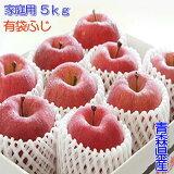 家庭用『有袋ふじ』5kgダンボール・フルーツキャップ詰(約13〜20玉入)