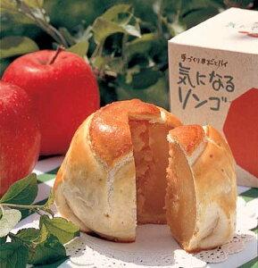 気になるリンゴふじ3箱入※しばらくの間、ふじのみの販売になります。