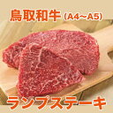 鳥取和牛ランプステーキ【600g】【送料無料】【ギフト対応可】