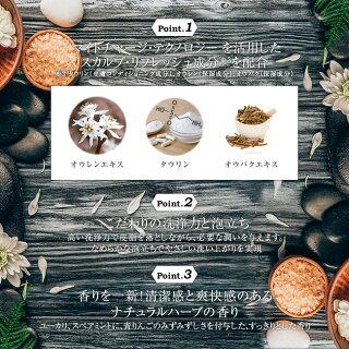 リアップエナジー薬用スカルプシャンプードライ(400ml)【l0t】【リアップ】