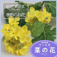 菜の花 造花 仏壇 お供え 【5,000円以上送料無料】
