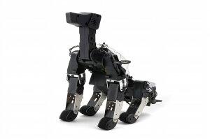 〈 四足歩行ロボットキット 〉 G-Dog 【hpi】