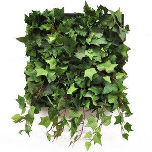 スクウェアフォルムに象られて壁に掛けられた植物たちは、絵画のように空間にアクセントを添え...