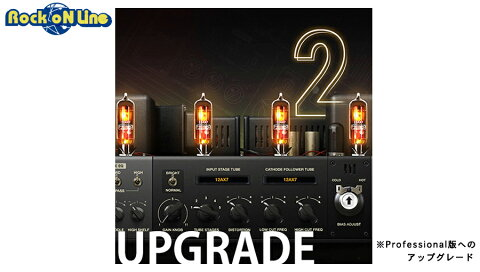 Positive Grid(ポジティブ グリッド) Upgrade From BIAS AMP Professional to BIAS AMP 2 Professional【※シリアルPDFメール納品】【DTM】【ギターアンプ(Amp)・シミュレーター】