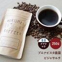 ロクメイコーヒー スペシャルティコーヒー 焙煎豆 グアテマラ ブエナビスタ農園 ビジャサルチ 250g | スペシャリティコーヒー コーヒー豆 珈琲豆 スペシャリティコーヒー 粉 豆のまま 中挽き 粗挽き 水出し ストレートコーヒー シングルオリジン おしゃれ 高品質 高級 人気